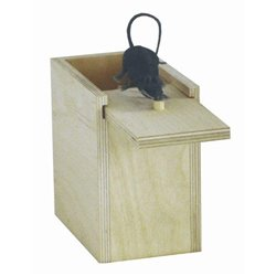 Wood Mouse Trick Box