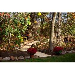 Garden Walkway - 2 Feet Wide