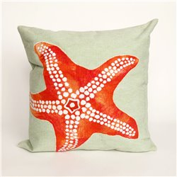 Orange-Red Starfish on Sea Foam Green